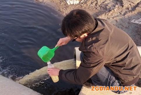电镀、榨菜废水合流排放