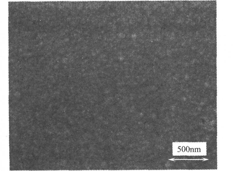 Zn—Ni合金高分辨率的SEM表面形貌