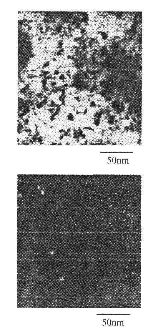 电沉积C0—Ni—Fe合金薄膜的TEM图像