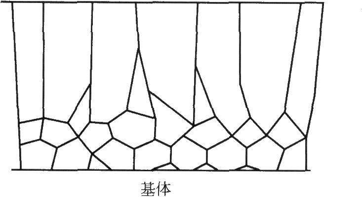 柱状镀层的横截面(与基体垂直)示意图
