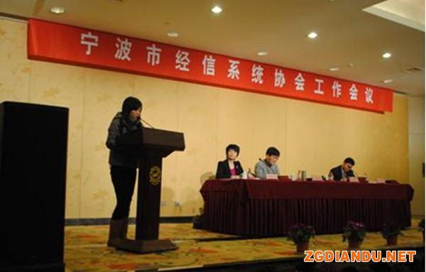 宁波市电镀协会徐虹主任汇报2012年度总结