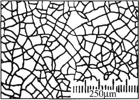 微孔铬和微裂纹铬的表观状态