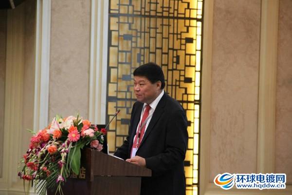 中国表面工程协会电镀分会理事长马捷