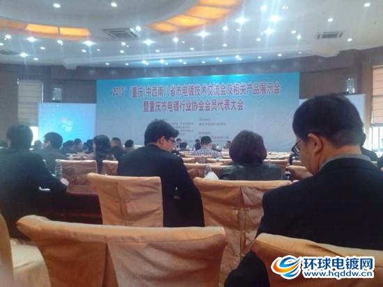 2013重庆电镀行业协会代表大会