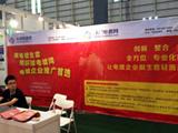 2013东莞国际电镀工业、表面处理及涂料展